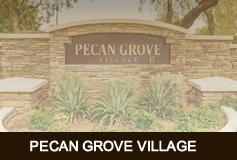 Pecan Grove Village
